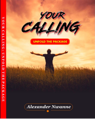 Your Calling - Unfold The Package
