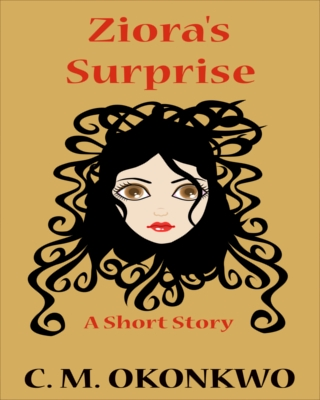 Ziora's Surprise