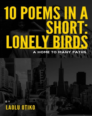 10 Poems in a Short: Lonely Birds