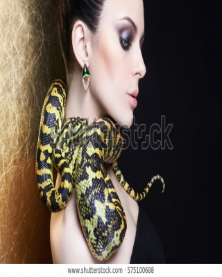 The Seduced Python