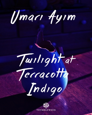 Twilight at Terracotta Indigo