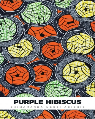 Purple Hibiscus - (Preview) #Adichie