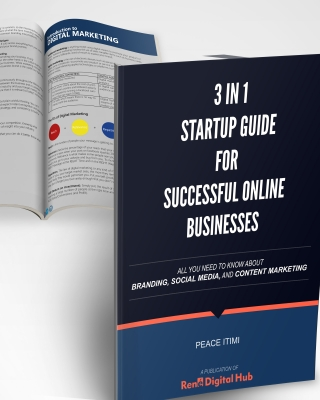 3 in 1 Startup Guide for Successful Online Businesses (Branding,