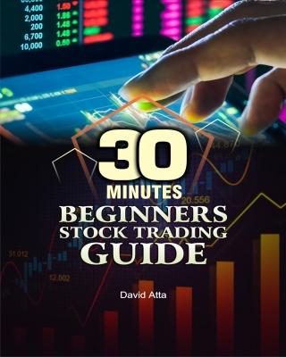 30 minutes beginner stock trading guide