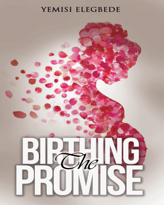 Birthing the Promise