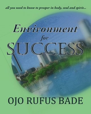 Environment For Success