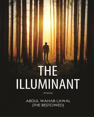 The Illuminant