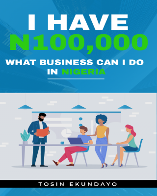 I Have N100,000; What Business Can I Do In Nigeria?