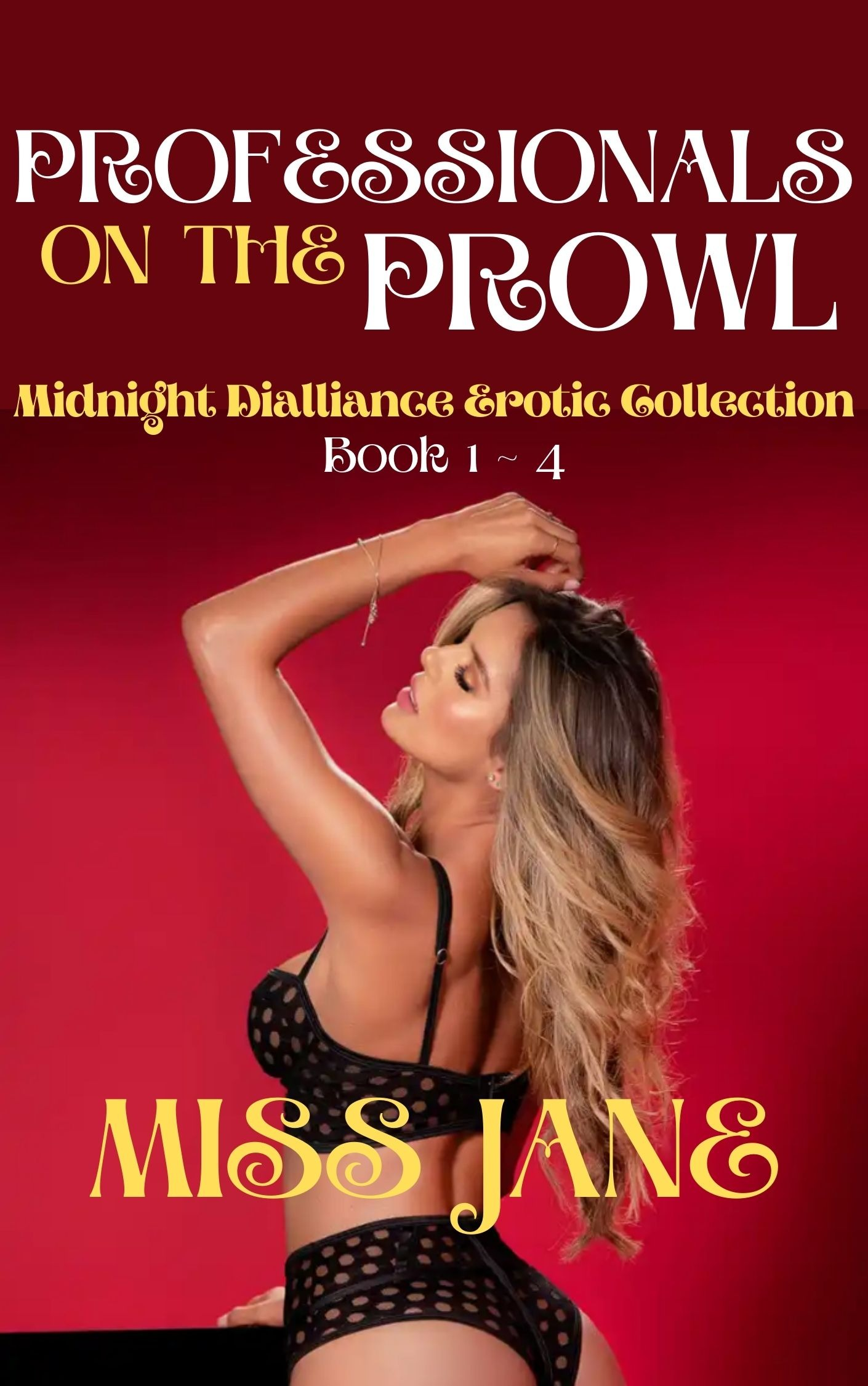 PROFESSIONALS ON THE PROWL: EROTIC BUNDLE