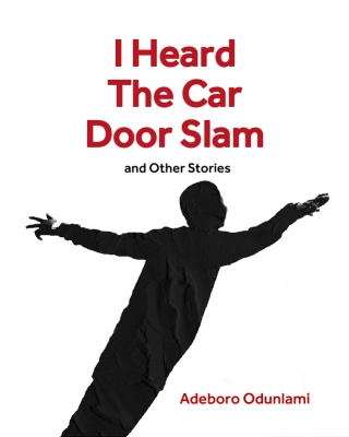 I Heard The Car Door Slam and Other Stories