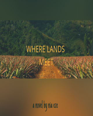 Where Lands Meet (A preview)