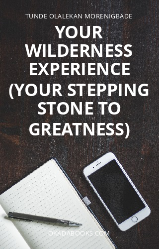 Your Wilderness Experience (Your Stepping Stone To Greatness)