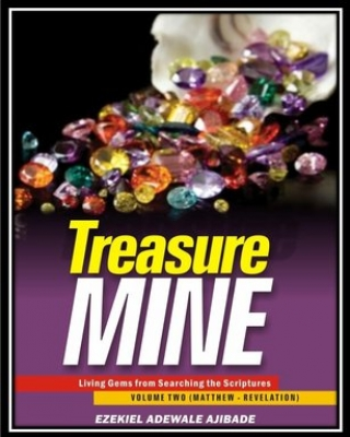 Treasure Mine Vol. 2