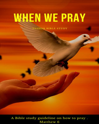 When we pray: A Bible Study Guide on how to pray