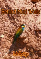 Behind Mud Walls