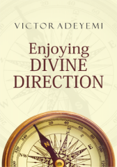 Enjoying Divine Direction