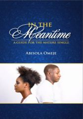 In The Meantime (A guide for the mature single) - Adult Only (18+)