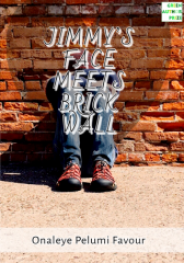 Jimmy's Face Meets Brick Wall