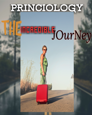 The Incredible Journey  ssr