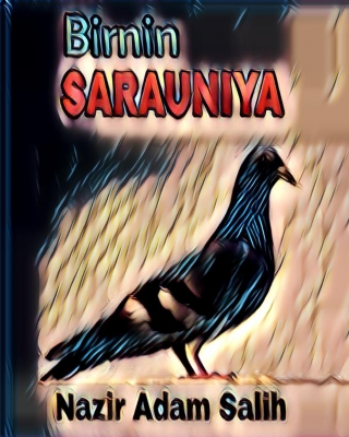 BIRNIN SARAUNIYA 1