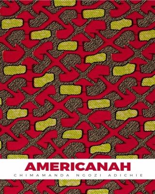 Americanah - #CNA
