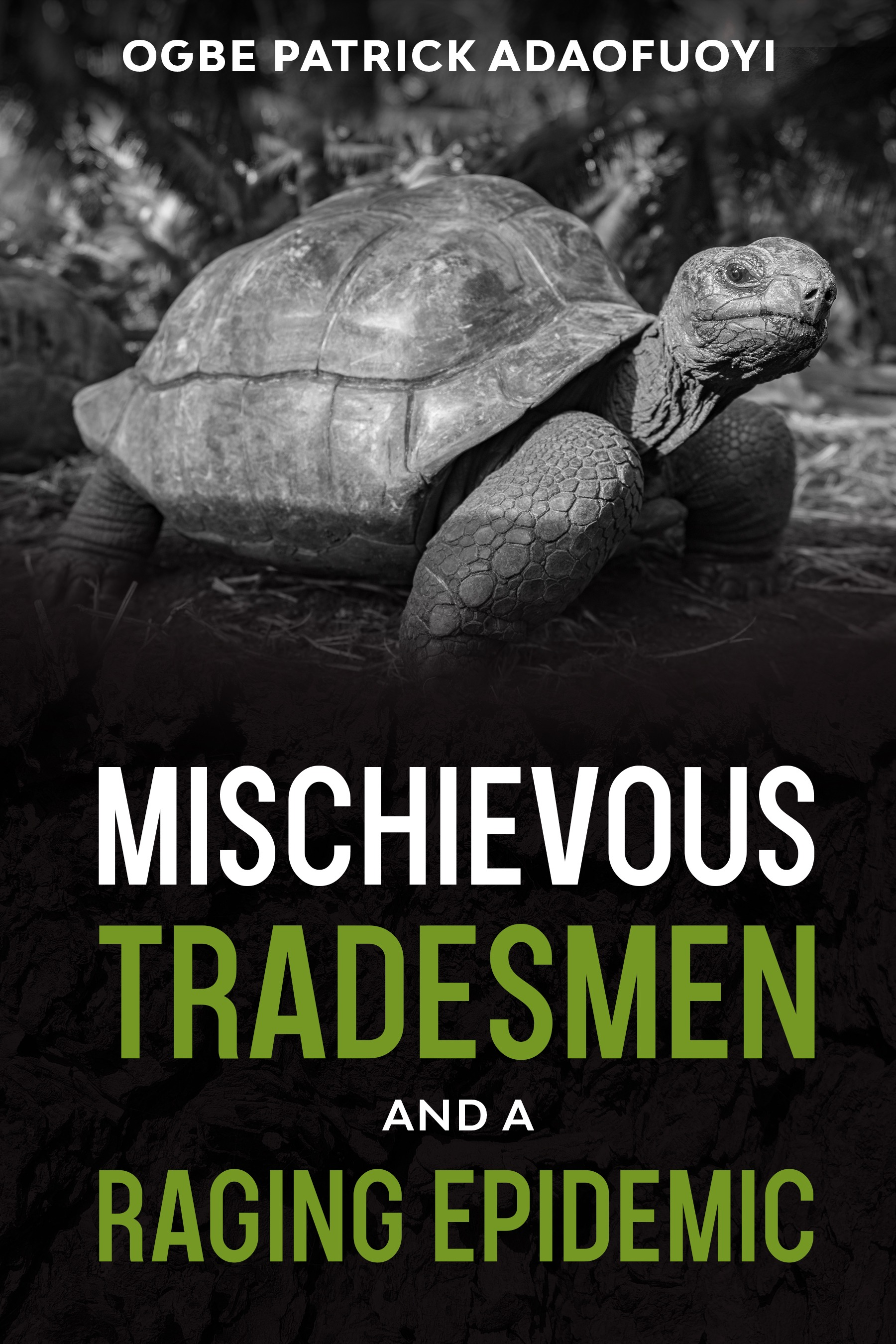 Mischievous Tradesmen and A Raging Epidemic