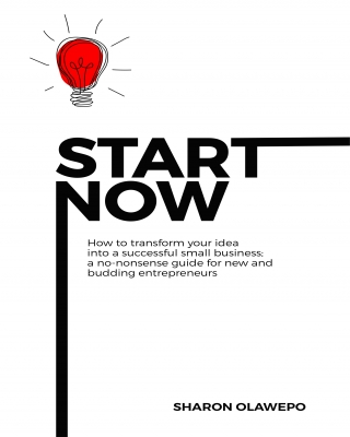 Start Now: Ultimate Small Business & Entrepreneur Guide