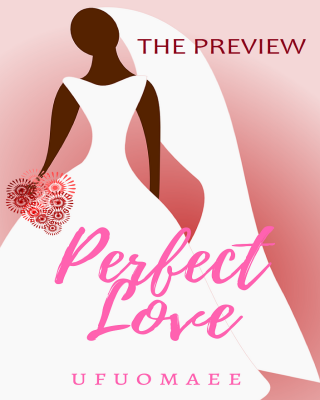 Perfect Love - The Preview
