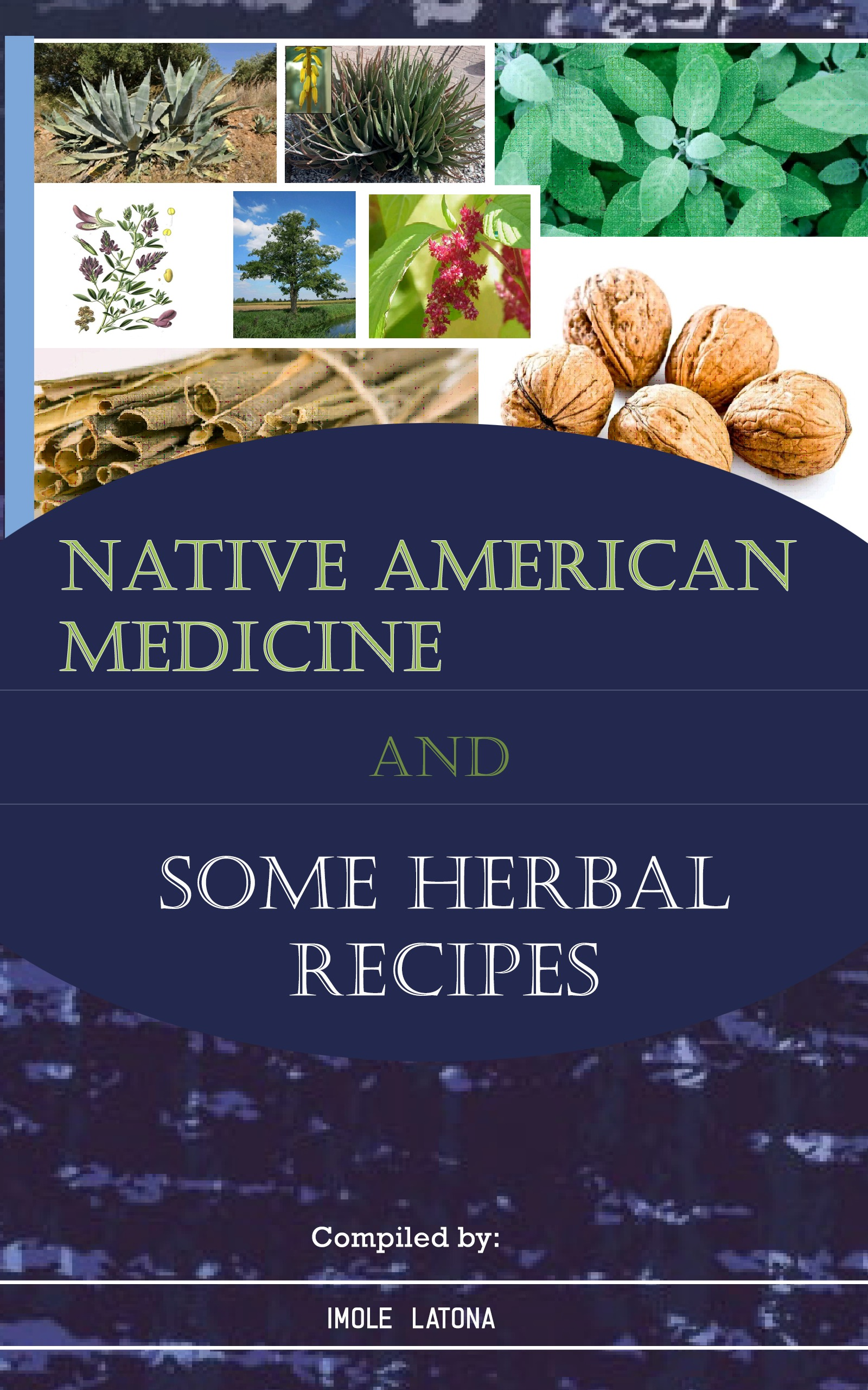 NATIVE AMERICAN MEDICINE AND SOME HERBAL RECIPES