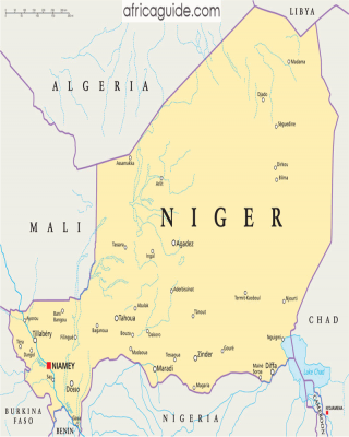Démocratie, Etat et milieux d'affaires au Niger