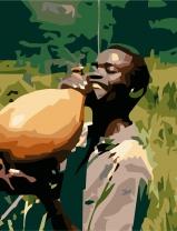 Paschal Nwankwo